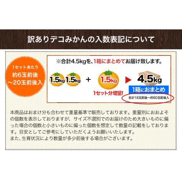 デコみかん 1.5kg 訳あり 送料無料 デコ みかん デコポン 同品種 熊本県産 旬 の みかん 柑橘 産地直送 取り寄せ 箱 3月中旬-3月末頃より順次出荷予定|kumamotofood|13