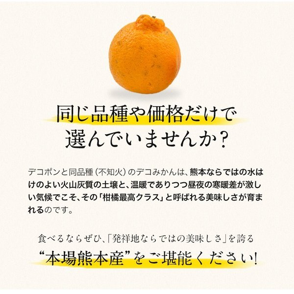 デコみかん 1.5kg 訳あり 送料無料 デコ みかん デコポン 同品種 熊本県産 旬 の みかん 柑橘 産地直送 取り寄せ 箱 3月中旬-3月末頃より順次出荷予定|kumamotofood|14