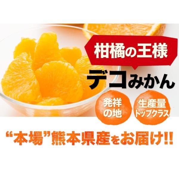 デコみかん 1.5kg 訳あり 送料無料 デコ みかん デコポン 同品種 熊本県産 旬 の みかん 柑橘 産地直送 取り寄せ 箱 3月中旬-3月末頃より順次出荷予定|kumamotofood|15