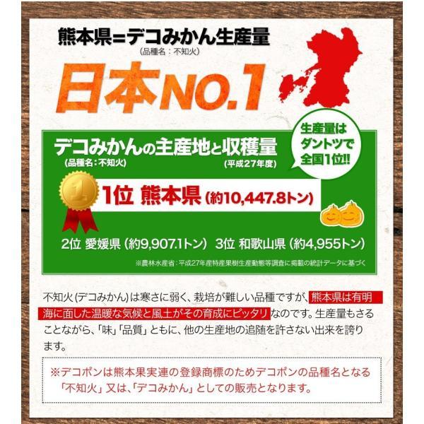 デコみかん 1.5kg 訳あり 送料無料 デコ みかん デコポン 同品種 熊本県産 旬 の みかん 柑橘 産地直送 取り寄せ 箱 3月中旬-3月末頃より順次出荷予定|kumamotofood|16