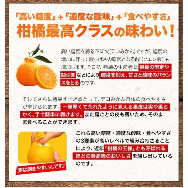 デコみかん 1.5kg 訳あり 送料無料 デコ みかん デコポン 同品種 熊本県産 旬 の みかん 柑橘 産地直送 取り寄せ 箱 3月中旬-3月末頃より順次出荷予定|kumamotofood|17