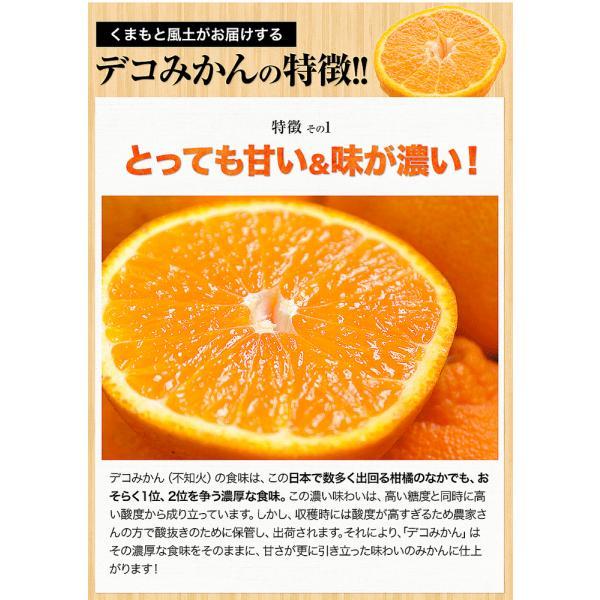 デコみかん 1.5kg 訳あり 送料無料 デコ みかん デコポン 同品種 熊本県産 旬 の みかん 柑橘 産地直送 取り寄せ 箱 3月中旬-3月末頃より順次出荷予定|kumamotofood|18