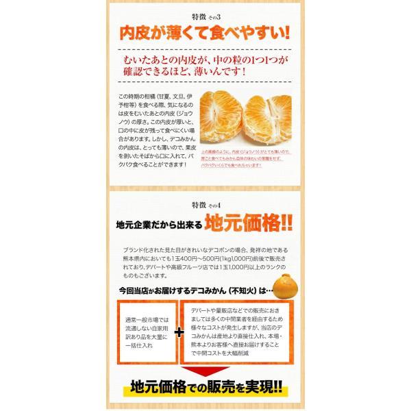 デコみかん 1.5kg 訳あり 送料無料 デコ みかん デコポン 同品種 熊本県産 旬 の みかん 柑橘 産地直送 取り寄せ 箱 3月中旬-3月末頃より順次出荷予定|kumamotofood|20