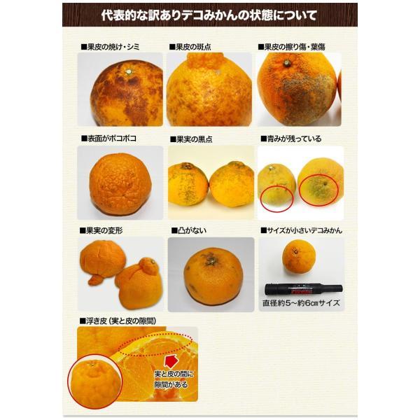 デコみかん 1.5kg 訳あり 送料無料 デコ みかん デコポン 同品種 熊本県産 旬 の みかん 柑橘 産地直送 取り寄せ 箱 3月中旬-3月末頃より順次出荷予定|kumamotofood|21