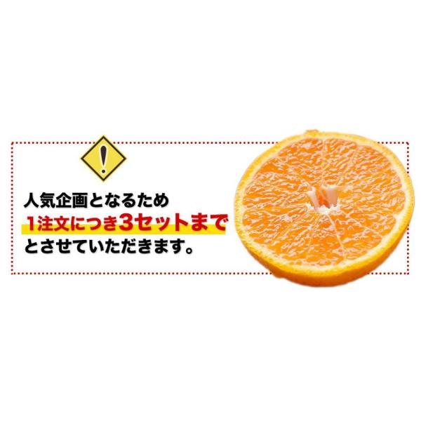 デコみかん 1.5kg 訳あり 送料無料 デコ みかん デコポン 同品種 熊本県産 旬 の みかん 柑橘 産地直送 取り寄せ 箱 3月中旬-3月末頃より順次出荷予定|kumamotofood|04