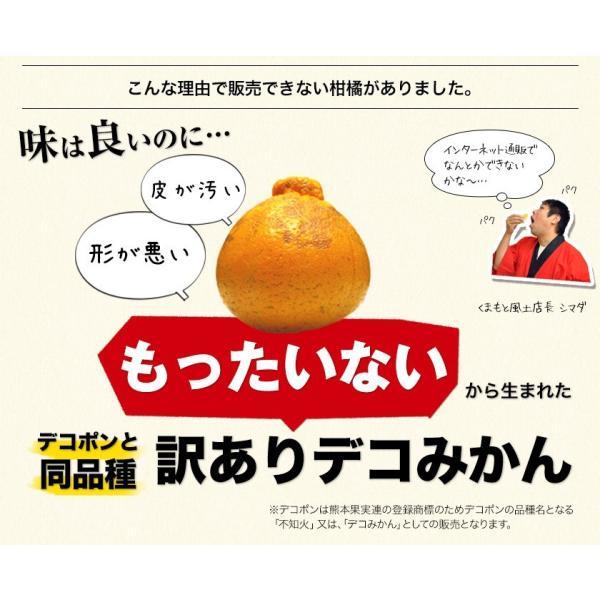 デコみかん 1.5kg 訳あり 送料無料 デコ みかん デコポン 同品種 熊本県産 旬 の みかん 柑橘 産地直送 取り寄せ 箱 3月中旬-3月末頃より順次出荷予定|kumamotofood|05