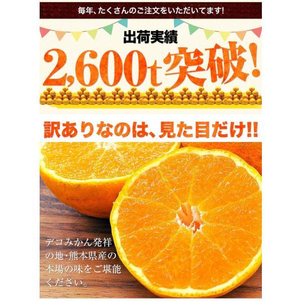 デコみかん 1.5kg 訳あり 送料無料 デコ みかん デコポン 同品種 熊本県産 旬 の みかん 柑橘 産地直送 取り寄せ 箱 3月中旬-3月末頃より順次出荷予定|kumamotofood|06