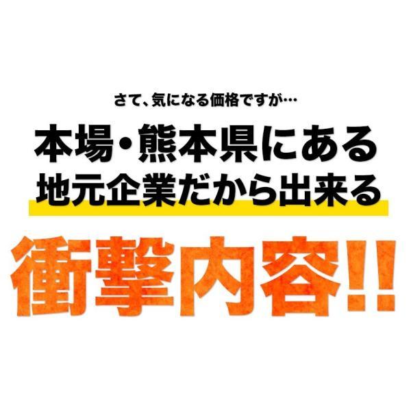 デコみかん 1.5kg 訳あり 送料無料 デコ みかん デコポン 同品種 熊本県産 旬 の みかん 柑橘 産地直送 取り寄せ 箱 3月中旬-3月末頃より順次出荷予定|kumamotofood|07