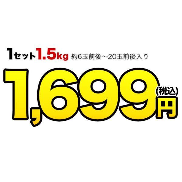デコみかん 1.5kg 訳あり 送料無料 デコ みかん デコポン 同品種 熊本県産 旬 の みかん 柑橘 産地直送 取り寄せ 箱 3月中旬-3月末頃より順次出荷予定|kumamotofood|08