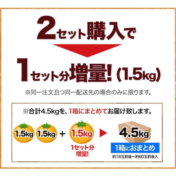 デコみかん 1.5kg 訳あり 送料無料 デコ みかん デコポン 同品種 熊本県産 旬 の みかん 柑橘 産地直送 取り寄せ 箱 3月中旬-3月末頃より順次出荷予定|kumamotofood|10