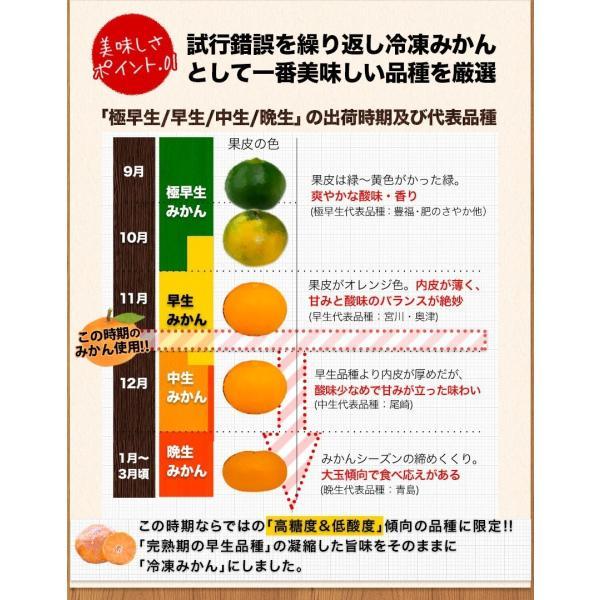 熊本県産 冷凍 小玉 みかん 皮むき 1.5kg 500g×3袋 送料無料 2s~3s 2s 3sサイズ 柑橘 2セット購入で1セットおまけ  7-14営業日以内に出荷予定 土日祝日除く kumamotofood 11