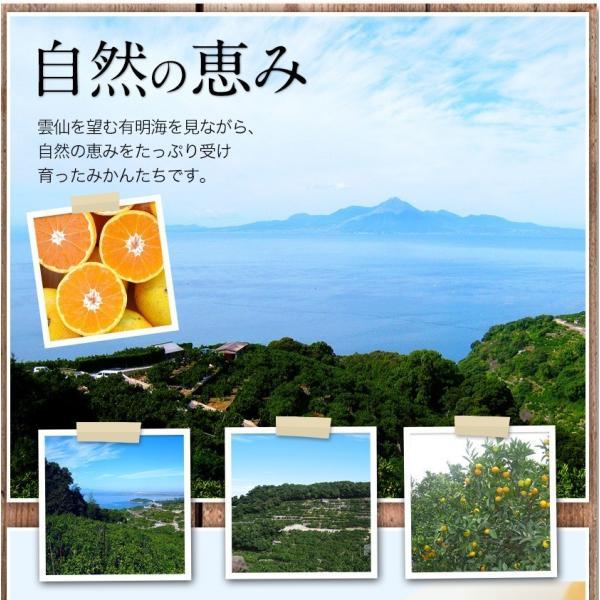 熊本県産 冷凍 小玉 みかん 皮むき 1.5kg 500g×3袋 送料無料 2s~3s 2s 3sサイズ 柑橘 2セット購入で1セットおまけ  7-14営業日以内に出荷予定 土日祝日除く kumamotofood 14