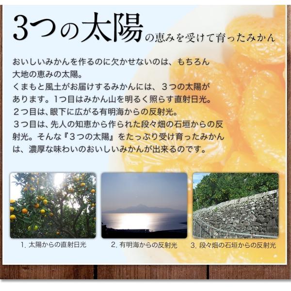 熊本県産 冷凍 小玉 みかん 皮むき 1.5kg 500g×3袋 送料無料 2s~3s 2s 3sサイズ 柑橘 2セット購入で1セットおまけ  7-14営業日以内に出荷予定 土日祝日除く kumamotofood 15