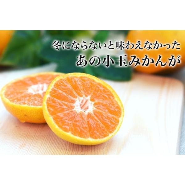 熊本県産 冷凍 小玉 みかん 皮むき 1.5kg 500g×3袋 送料無料 2s~3s 2s 3sサイズ 柑橘 2セット購入で1セットおまけ  7-14営業日以内に出荷予定 土日祝日除く kumamotofood 05