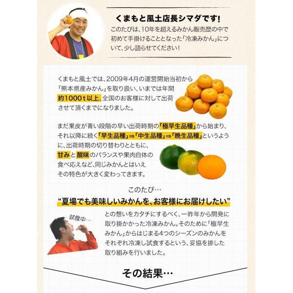 熊本県産 冷凍 小玉 みかん 皮むき 1.5kg 500g×3袋 送料無料 2s~3s 2s 3sサイズ 柑橘 2セット購入で1セットおまけ  7-14営業日以内に出荷予定 土日祝日除く kumamotofood 08
