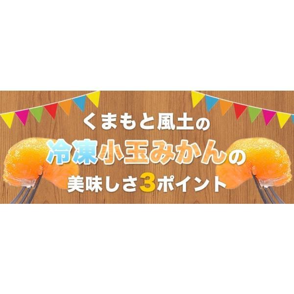 熊本県産 冷凍 小玉 みかん 皮むき 1.5kg 500g×3袋 送料無料 2s~3s 2s 3sサイズ 柑橘 2セット購入で1セットおまけ  7-14営業日以内に出荷予定 土日祝日除く kumamotofood 10