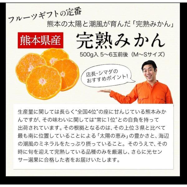 送料無料 マスクメロン/デコポン/みかん/安納芋 お年賀 ギフト 『九州フルーツ盛り合わせ』3月上旬-3月末頃より順次出荷|kumamotofood|11