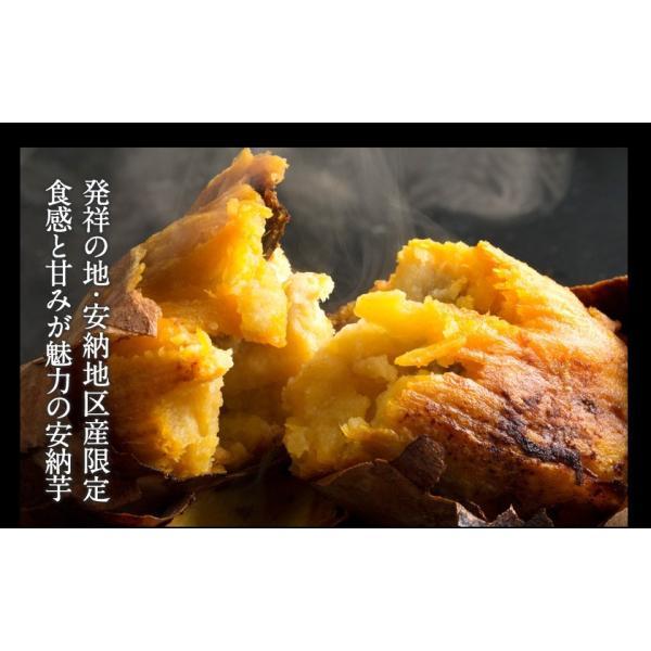 送料無料 マスクメロン/デコポン/みかん/安納芋 お年賀 ギフト 『九州フルーツ盛り合わせ』3月上旬-3月末頃より順次出荷|kumamotofood|12