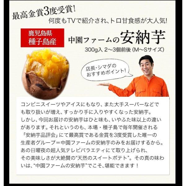 送料無料 マスクメロン/デコポン/みかん/安納芋 お年賀 ギフト 『九州フルーツ盛り合わせ』3月上旬-3月末頃より順次出荷|kumamotofood|13