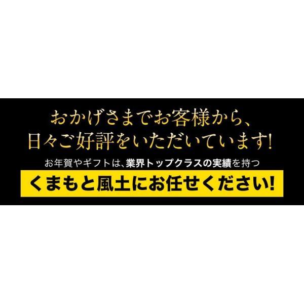 看板フルーツを厳選 九州フルーツ盛り合わせ  マスクメロン/デコポン/みかん/安納芋  送料無料 7-14営業日以内に出荷(土日祝除)|kumamotofood|17