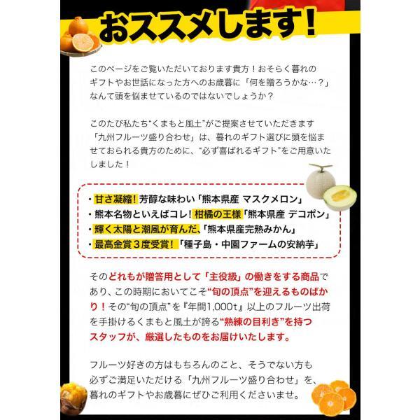 送料無料 マスクメロン/デコポン/みかん/安納芋 お年賀 ギフト 『九州フルーツ盛り合わせ』3月上旬-3月末頃より順次出荷|kumamotofood|04