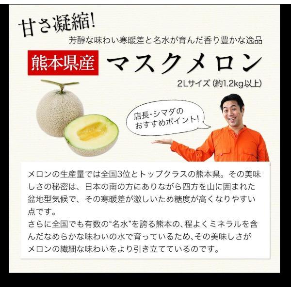 送料無料 マスクメロン/デコポン/みかん/安納芋 お年賀 ギフト 『九州フルーツ盛り合わせ』3月上旬-3月末頃より順次出荷|kumamotofood|07
