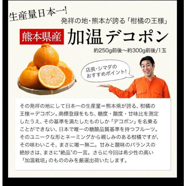 送料無料 マスクメロン/デコポン/みかん/安納芋 お年賀 ギフト 『九州フルーツ盛り合わせ』3月上旬-3月末頃より順次出荷|kumamotofood|09