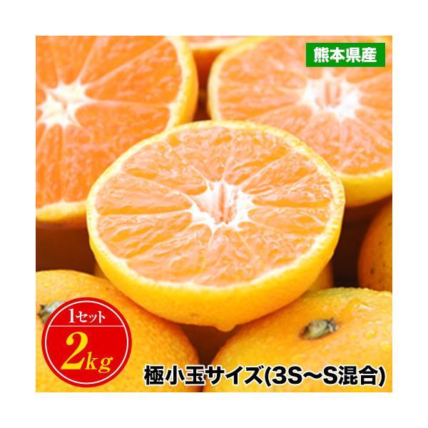 小玉 みかん 2kg 送料無料 2セットで1kgおまけ増量 訳あり 熊本  3-10営業日以内に出荷予定(土日祝日除く) kumamotofood