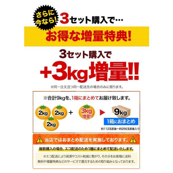 小玉 みかん 2kg 送料無料 2セットで1kgおまけ増量 訳あり 熊本  3-10営業日以内に出荷予定(土日祝日除く) kumamotofood 13