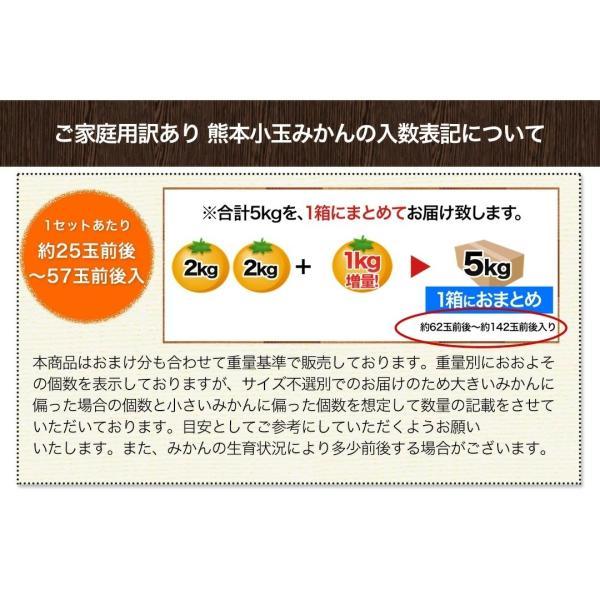 小玉 みかん 2kg 送料無料 2セットで1kgおまけ増量 訳あり 熊本  3-10営業日以内に出荷予定(土日祝日除く) kumamotofood 14