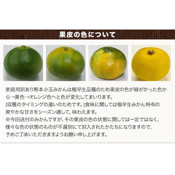 小玉 みかん 2kg 送料無料 2セットで1kgおまけ増量 訳あり 熊本  3-10営業日以内に出荷予定(土日祝日除く) kumamotofood 18