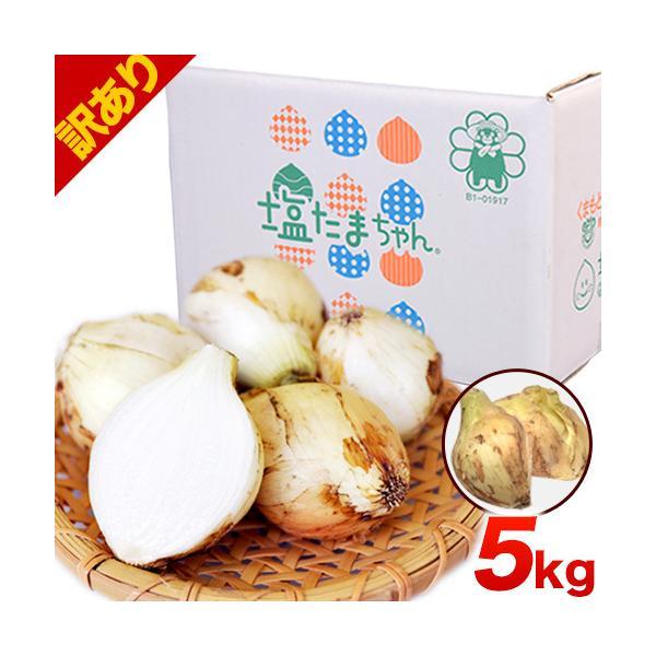 TVで紹介 送料無料 塩たまちゃん 子出藤 (ねでふじ)さんの塩タマネギ 梨のように甘い 熊本県産の新玉ねぎ 1セット1kg 6月中旬-7月上旬頃より順次出荷|kumamotofood