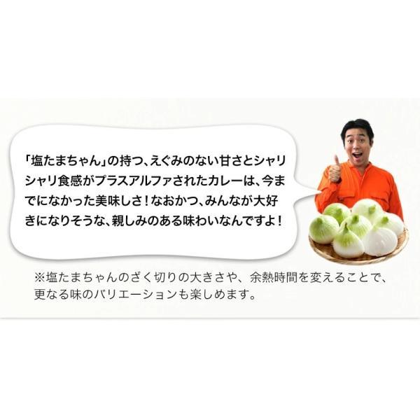 TVで紹介 送料無料 塩たまちゃん 子出藤 (ねでふじ)さんの塩タマネギ 梨のように甘い 熊本県産の新玉ねぎ 1セット1kg 6月中旬-7月上旬頃より順次出荷|kumamotofood|14