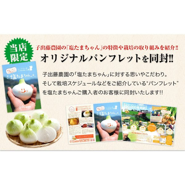 TVで紹介 送料無料 塩たまちゃん 子出藤 (ねでふじ)さんの塩タマネギ 梨のように甘い 熊本県産の新玉ねぎ 1セット1kg 6月中旬-7月上旬頃より順次出荷|kumamotofood|15
