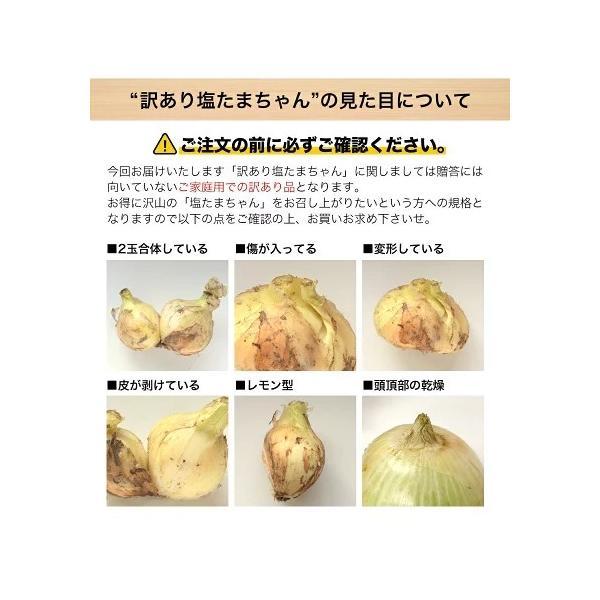 TVで紹介 送料無料 塩たまちゃん 子出藤 (ねでふじ)さんの塩タマネギ 梨のように甘い 熊本県産の新玉ねぎ 1セット1kg 6月中旬-7月上旬頃より順次出荷|kumamotofood|18