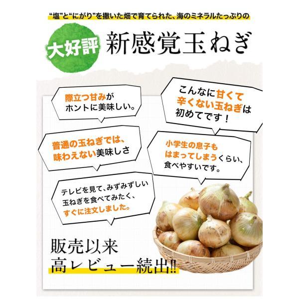 TVで紹介 送料無料 塩たまちゃん 子出藤 (ねでふじ)さんの塩タマネギ 梨のように甘い 熊本県産の新玉ねぎ 1セット1kg 6月中旬-7月上旬頃より順次出荷|kumamotofood|04