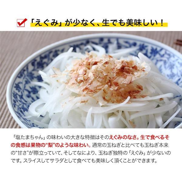 TVで紹介 送料無料 塩たまちゃん 子出藤 (ねでふじ)さんの塩タマネギ 梨のように甘い 熊本県産の新玉ねぎ 1セット1kg 6月中旬-7月上旬頃より順次出荷|kumamotofood|06