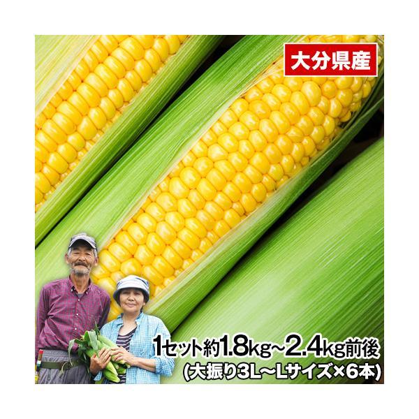 とうもろこし  送料無料 すごあまこーん 野菜 フルーツコーン トウモロコシ 品種 7本 3L~L 約2.1kg-2.4kg 7月中旬-8月下旬頃より発送予定