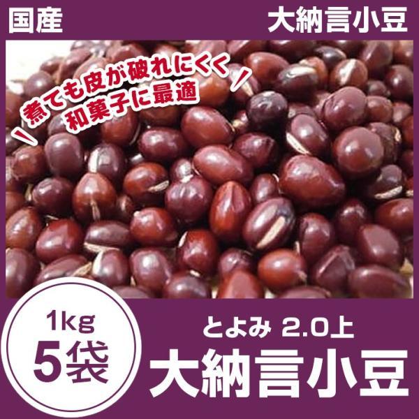 大納言小豆5kg(1kg×5袋)令和2年秋物  2.0上 国産 北海道産 とよみ