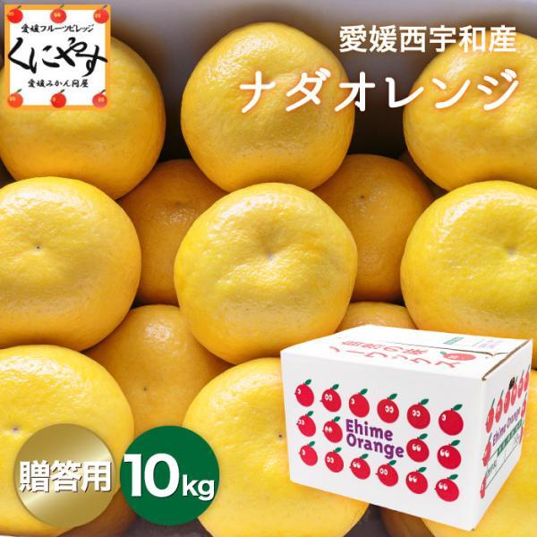 「贈答ナダオレンジ10」 送料無料 高級果物 贈答用ナダオレンジ10kg,皮むき簡単食べ易い冷やして食べるとひんやりジューシー(河内晩柑,かわちばんかん)