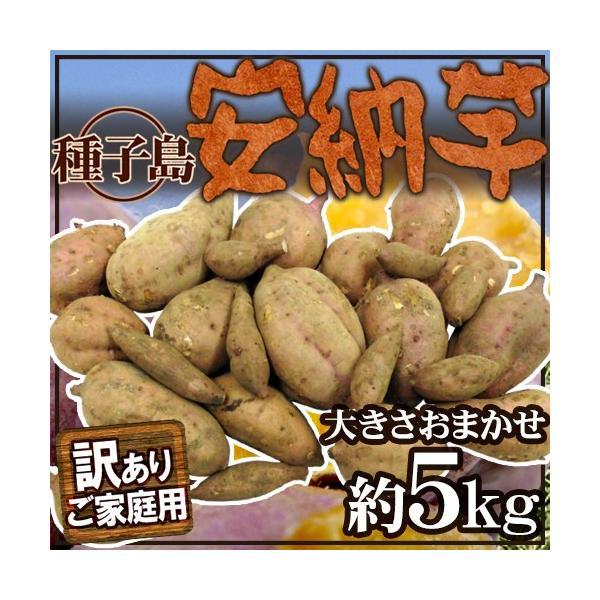 """種子島産 """"安納芋"""" 訳あり 約5kg 大きさおまかせ【予約 10月下旬以降】 送料無料"""