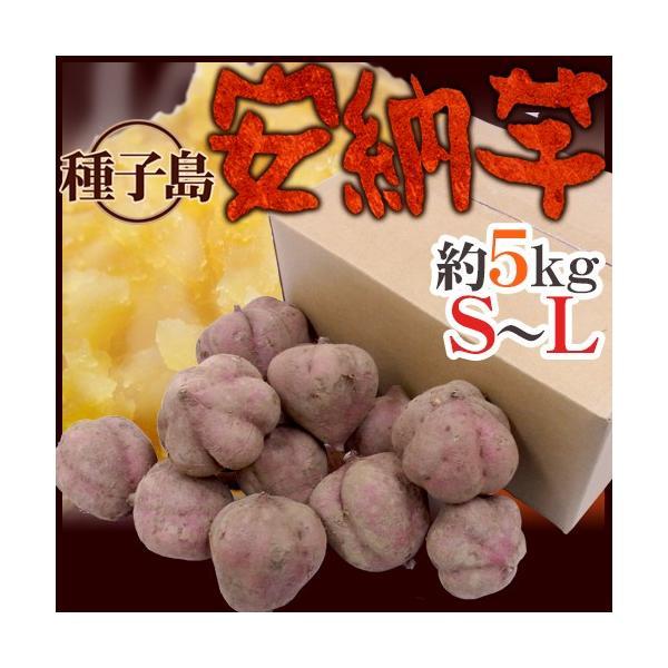 """種子島産 """"安納芋"""" S〜Lサイズ 約5kg【予約 10月下旬以降】 送料無料"""