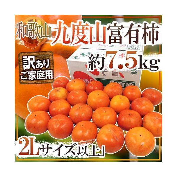 """和歌山県九度山産 """"富有柿"""" 訳あり 2L以上 約7.5kg【予約 11月以降】 送料無料"""