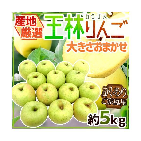 """りんご """"王林りんご"""" 訳あり 約5kg 大きさおまかせ 産地厳選【予約 10月下旬以降】 送料無料"""