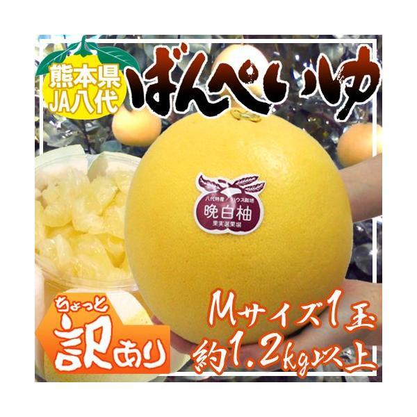 """熊本県八代特産 """"晩白柚"""" ばんぺいゆ ちょっと訳あり Mサイズ 1玉 約1.2kg前後【予約 12月以降】"""