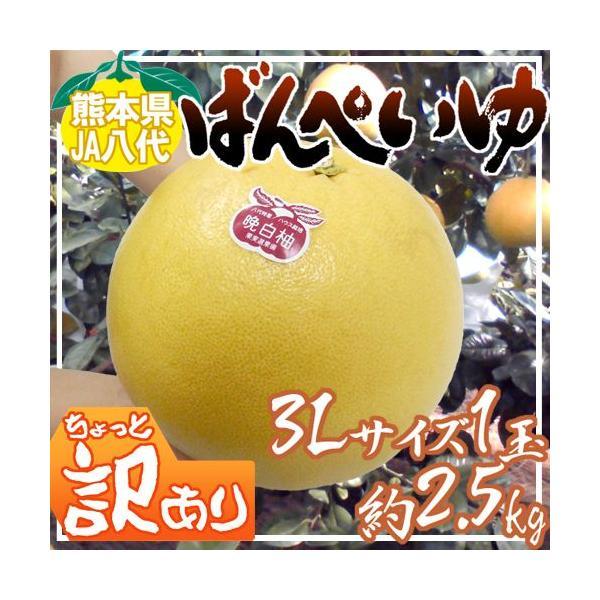 """熊本県八代特産 """"晩白柚"""" ばんぺいゆ ちょっと訳あり 超特大3Lサイズ 約2.5kg【予約 12月以降】"""