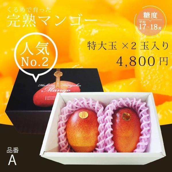 【品番A】特大玉×2玉入り くるめで育った完熟マンゴー|kurashige-nouen