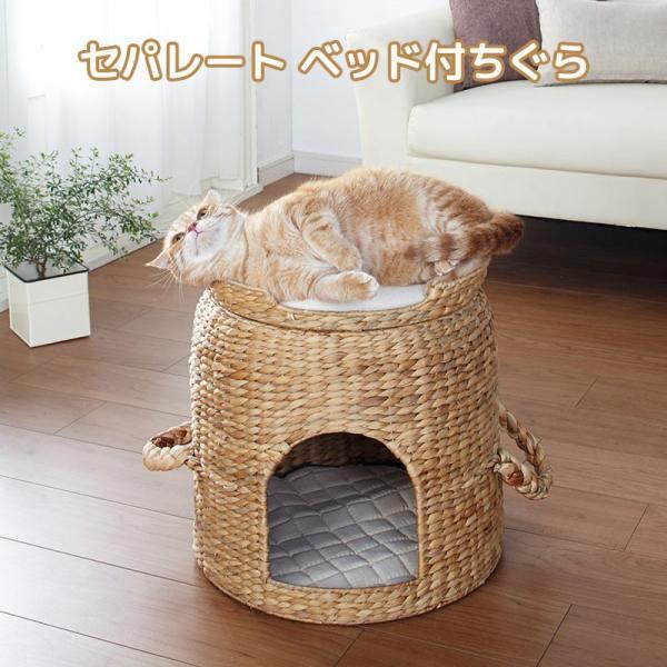 セパレート ベッド付ちぐら ねこ 猫 ちぐら 犬 ペットハウス 小屋 カゴ ネコ 持ち手 小型犬 つぐら 寝床 キャットハウス (メーカー直送、代金引き不可) kurashikan
