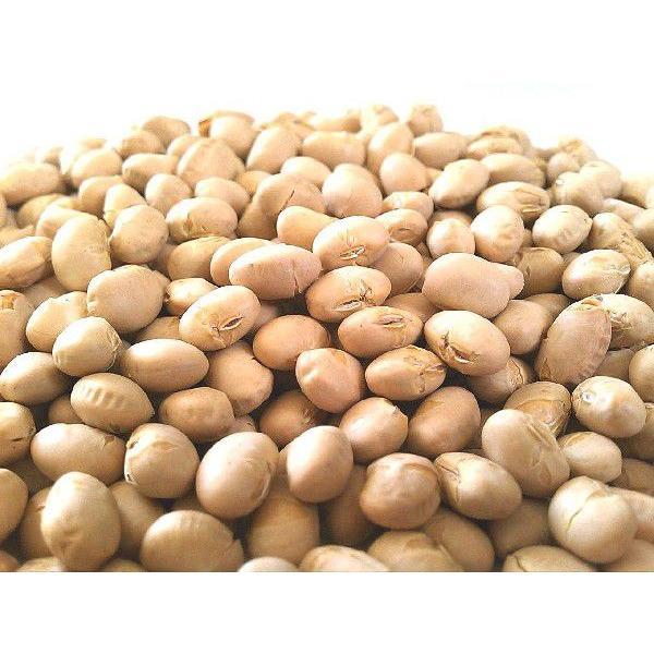素煎り大豆 1000g 国産 チャック袋 500gX2袋 九州工場製造品 黒田屋|kurodamameya