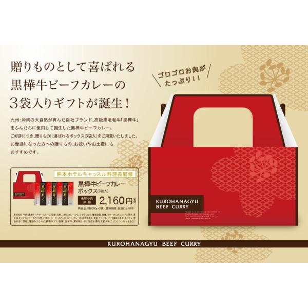 黒毛和牛 黒樺牛 ビーフカレー ボックス 3袋入 ギフト セット オリジナル